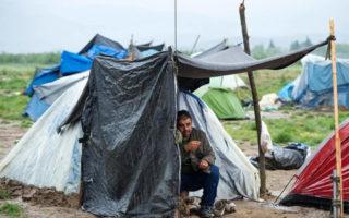 migrants-tabgha